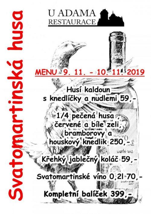 2019_svatomartinská_husa kopie